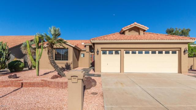 25601 S Nottingham Drive, Sun Lakes, AZ 85248 (MLS #5939418) :: Yost Realty Group at RE/MAX Casa Grande