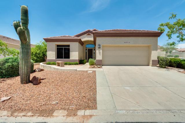 6333 E Viewmont Drive #65, Mesa, AZ 85215 (MLS #5939433) :: Riddle Realty