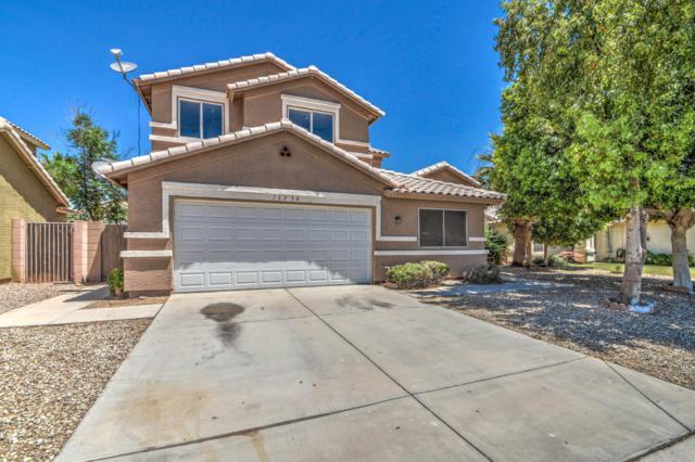 16236 W Tonto Street, Goodyear, AZ 85338 (MLS #5939434) :: Yost Realty Group at RE/MAX Casa Grande