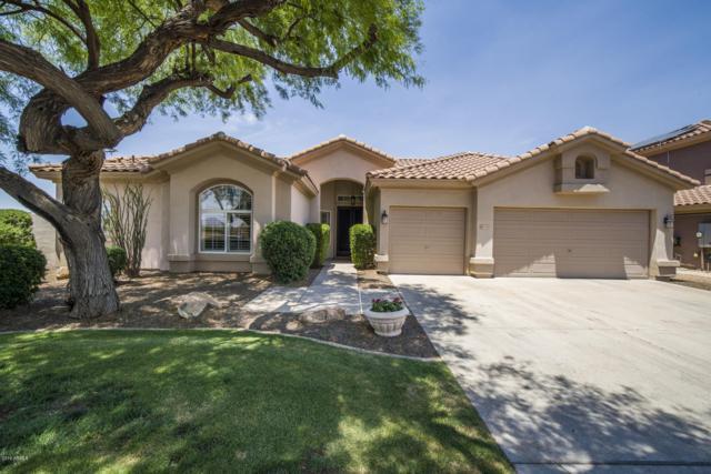 5204 E Hartford Avenue, Scottsdale, AZ 85254 (MLS #5939439) :: Arizona 1 Real Estate Team