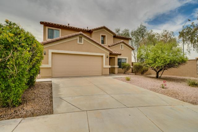 16291 W Yucatan Drive, Surprise, AZ 85379 (MLS #5939441) :: Riddle Realty