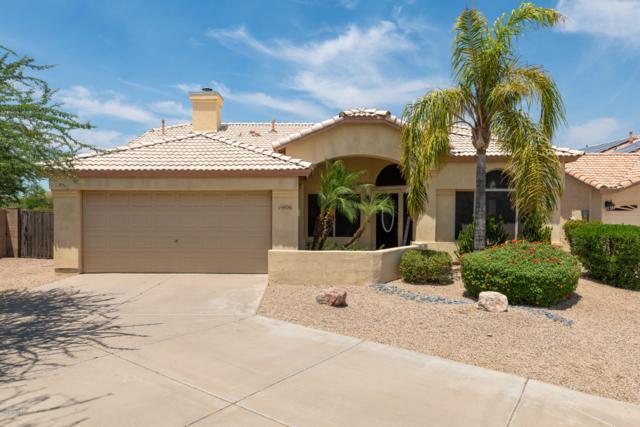 14826 N 92ND Place, Scottsdale, AZ 85260 (MLS #5939458) :: The Pete Dijkstra Team