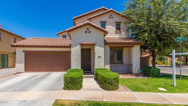 3564 E Tyson Street, Gilbert, AZ 85295 (MLS #5939488) :: The Results Group