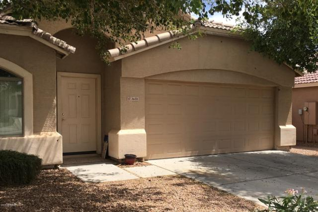 3688 W Santa Cruz Avenue, Queen Creek, AZ 85142 (MLS #5939489) :: Yost Realty Group at RE/MAX Casa Grande