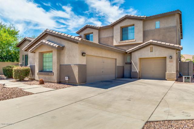 2410 E Coconino Drive, Chandler, AZ 85249 (MLS #5939516) :: The Laughton Team