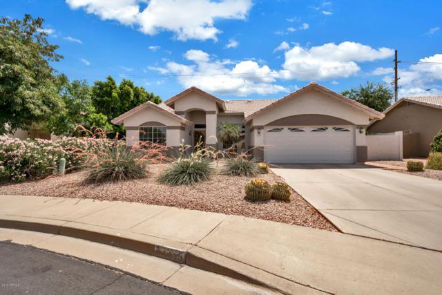 1019 S Ananea Avenue, Mesa, AZ 85208 (MLS #5939527) :: The Bill and Cindy Flowers Team