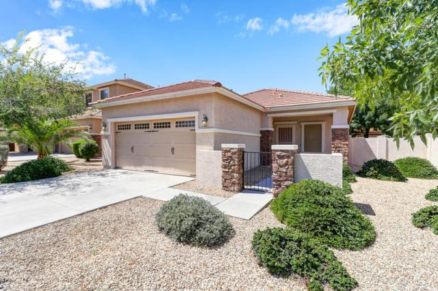 15636 W Devonshire Avenue, Goodyear, AZ 85395 (MLS #5939543) :: Yost Realty Group at RE/MAX Casa Grande