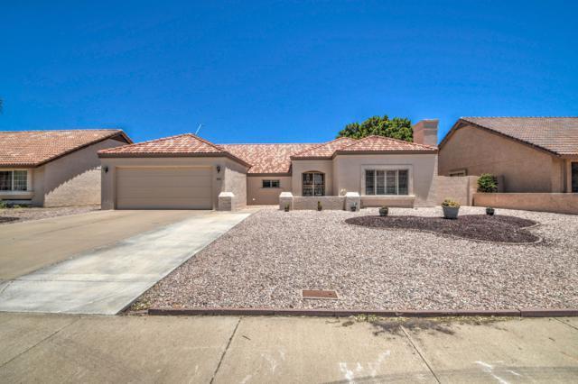 19237 N 67TH Drive, Glendale, AZ 85308 (MLS #5939554) :: Conway Real Estate