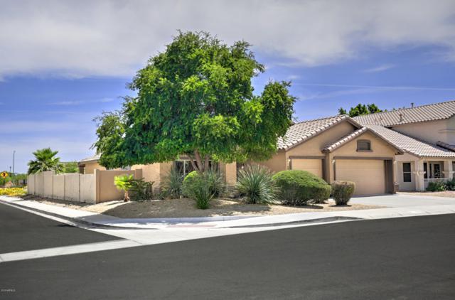 5423 W Topeka Drive, Glendale, AZ 85308 (MLS #5939582) :: Occasio Realty