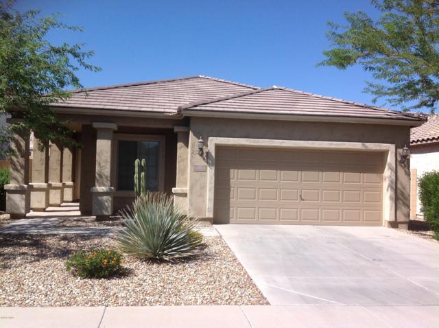 19442 W Adams Street, Buckeye, AZ 85326 (MLS #5939588) :: Occasio Realty