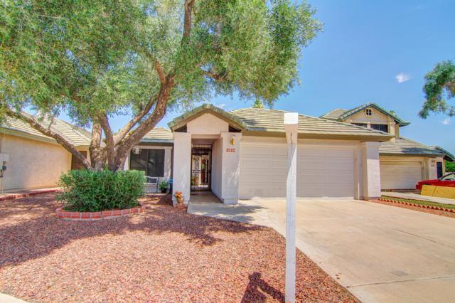 7520 W Sequoia Drive, Glendale, AZ 85308 (MLS #5939596) :: Revelation Real Estate