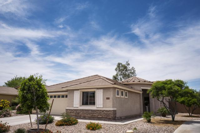 34868 N Stetson Court, Queen Creek, AZ 85142 (MLS #5939605) :: The Wehner Group