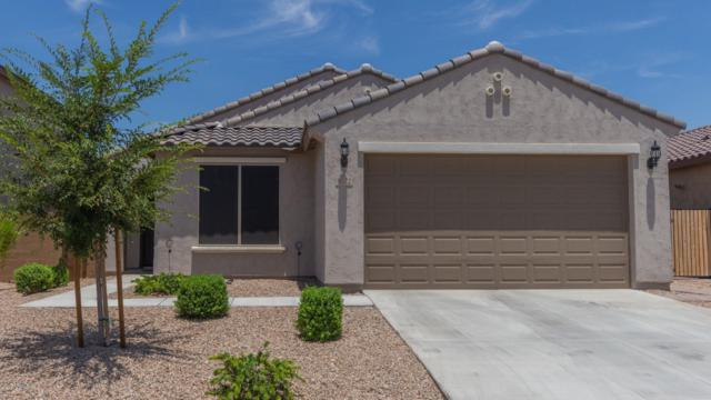 9572 W Chama Drive, Peoria, AZ 85383 (MLS #5939618) :: The Kenny Klaus Team