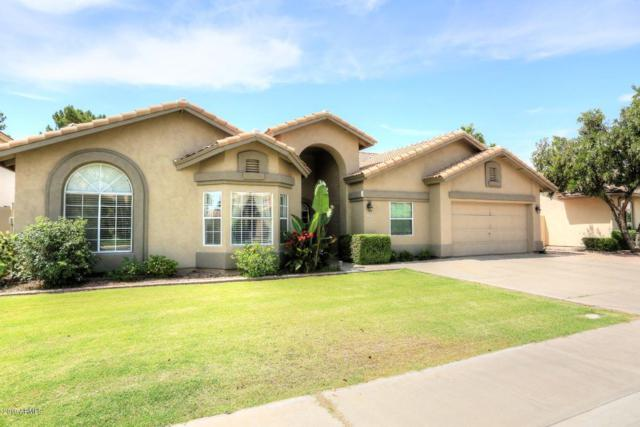 2225 E Tahitian Way, Gilbert, AZ 85234 (MLS #5939621) :: Revelation Real Estate