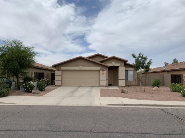 33140 N Cat Hills Avenue, Queen Creek, AZ 85142 (MLS #5939627) :: Yost Realty Group at RE/MAX Casa Grande