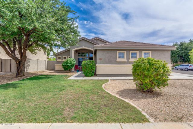 693 W Crane Court, Chandler, AZ 85286 (MLS #5939634) :: Revelation Real Estate