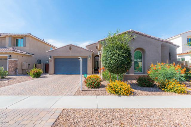 3136 E Maplewood Court, Gilbert, AZ 85297 (MLS #5939640) :: Revelation Real Estate
