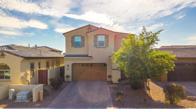 3870 S Bell Place, Chandler, AZ 85286 (MLS #5939668) :: Revelation Real Estate