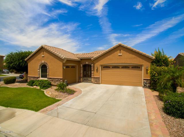 3232 S Kimberlee Way, Chandler, AZ 85286 (MLS #5939681) :: The Daniel Montez Real Estate Group