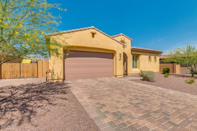 27073 N 81ST Avenue, Peoria, AZ 85383 (MLS #5939687) :: Yost Realty Group at RE/MAX Casa Grande