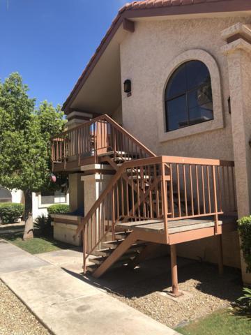 4545 N 67TH Avenue #2441, Phoenix, AZ 85033 (MLS #5939719) :: Occasio Realty
