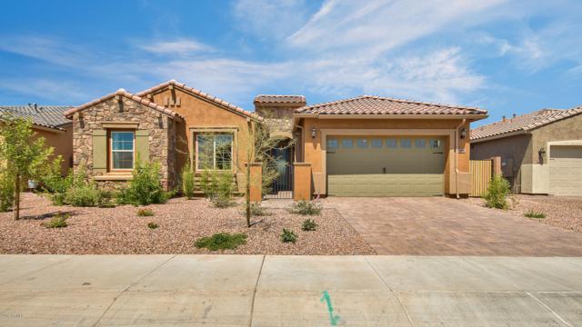 7488 S Reseda Street, Gilbert, AZ 85298 (MLS #5939731) :: neXGen Real Estate