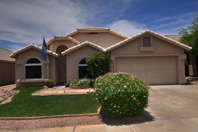 19832 N 14TH Place, Phoenix, AZ 85024 (MLS #5939741) :: Nate Martinez Team