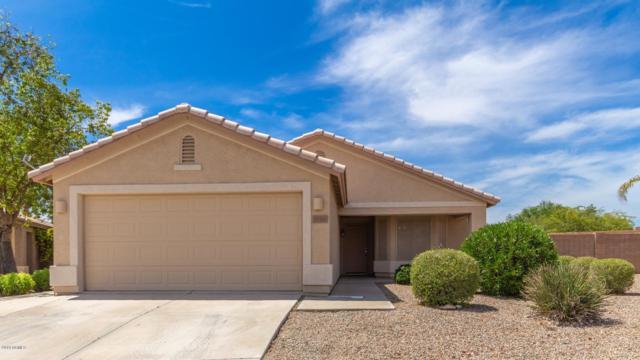 20968 N 93RD Lane, Peoria, AZ 85382 (MLS #5939751) :: The Laughton Team