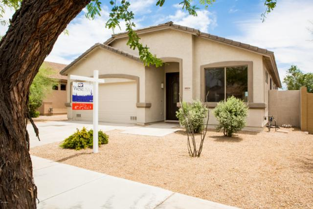 18159 W Canyon Lane, Goodyear, AZ 85338 (MLS #5939752) :: The Kenny Klaus Team