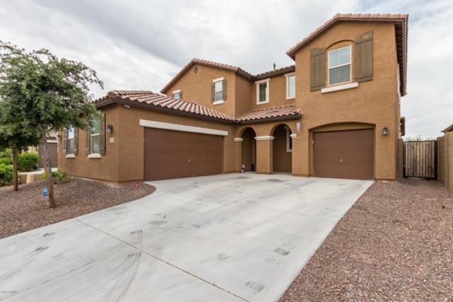 1658 N 214TH Lane, Buckeye, AZ 85396 (MLS #5939781) :: The Kenny Klaus Team