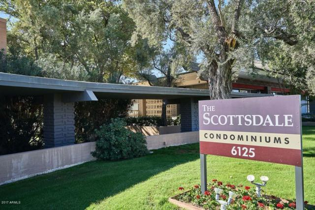6125 E Indian School Road #181, Scottsdale, AZ 85251 (MLS #5939797) :: Riddle Realty