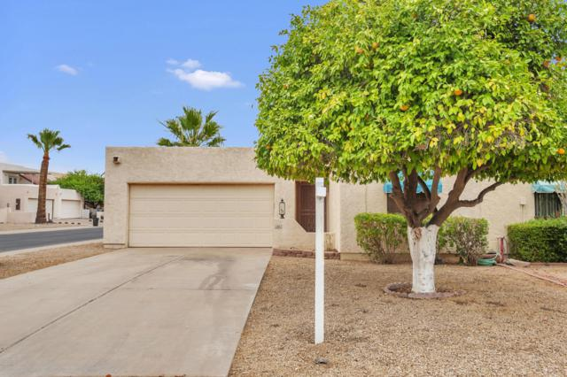 313 S Desert Avenue, Litchfield Park, AZ 85340 (MLS #5939805) :: Riddle Realty