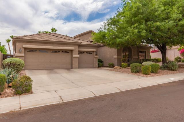 16402 S 16TH Avenue, Phoenix, AZ 85045 (MLS #5939807) :: Openshaw Real Estate Group in partnership with The Jesse Herfel Real Estate Group