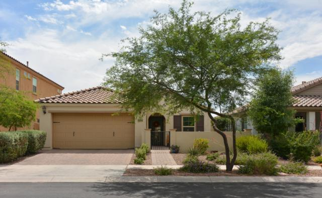 5104 S Planck Lane, Mesa, AZ 85212 (MLS #5939836) :: Revelation Real Estate