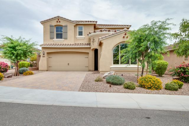 30905 N 138TH Avenue, Peoria, AZ 85383 (MLS #5939852) :: Cindy & Co at My Home Group