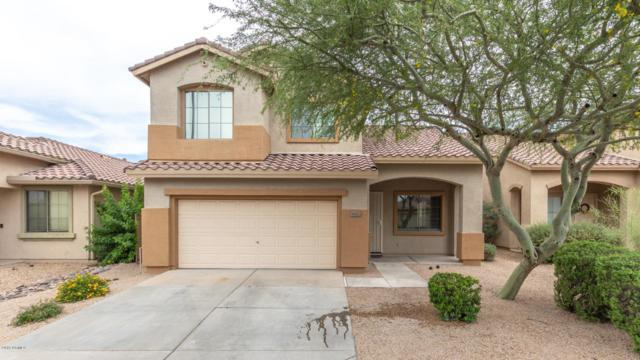 1622 W Hemingway Lane, Anthem, AZ 85086 (MLS #5939866) :: Revelation Real Estate