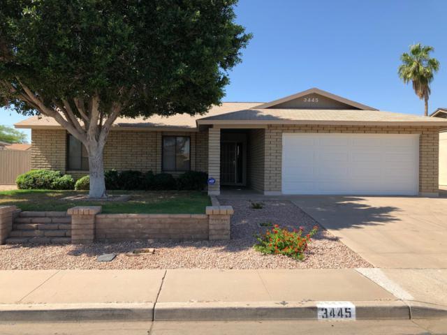3445 E El Moro Avenue, Mesa, AZ 85204 (MLS #5939890) :: Brett Tanner Home Selling Team