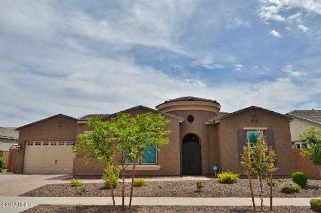 20063 E Maya Road, Queen Creek, AZ 85142 (MLS #5939895) :: Revelation Real Estate