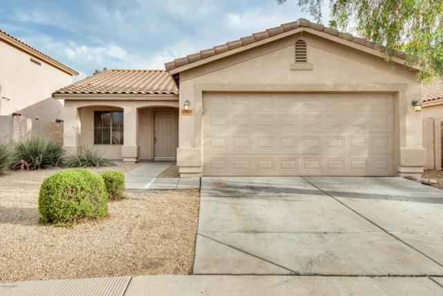 7019 W Phelps Road, Peoria, AZ 85382 (MLS #5939902) :: The Laughton Team