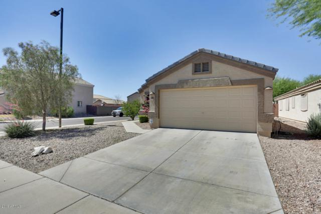 23906 W Desert Bloom Street, Buckeye, AZ 85326 (MLS #5939910) :: The Kenny Klaus Team