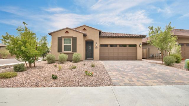 12809 W Caraveo Place, Peoria, AZ 85383 (MLS #5939927) :: Cindy & Co at My Home Group