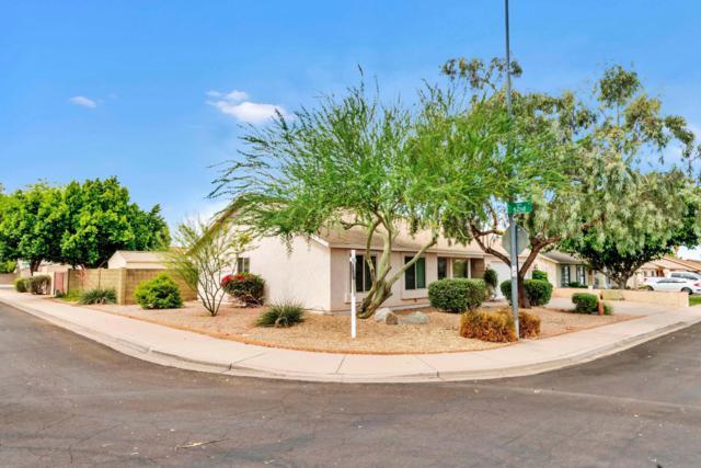 6231 E Princess Drive, Mesa, AZ 85205 (MLS #5939936) :: Riddle Realty