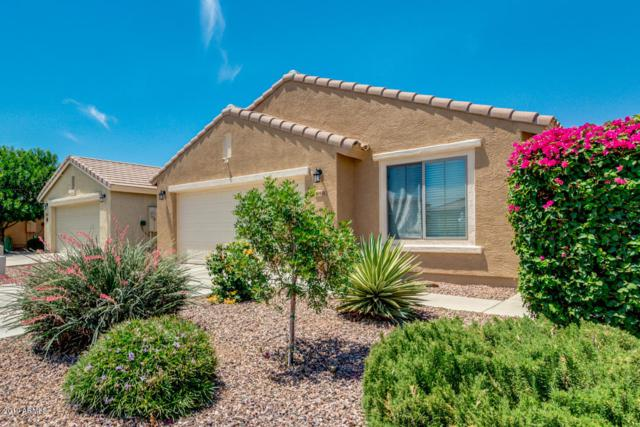 958 W Desert Seasons Drive, San Tan Valley, AZ 85143 (MLS #5939939) :: Revelation Real Estate