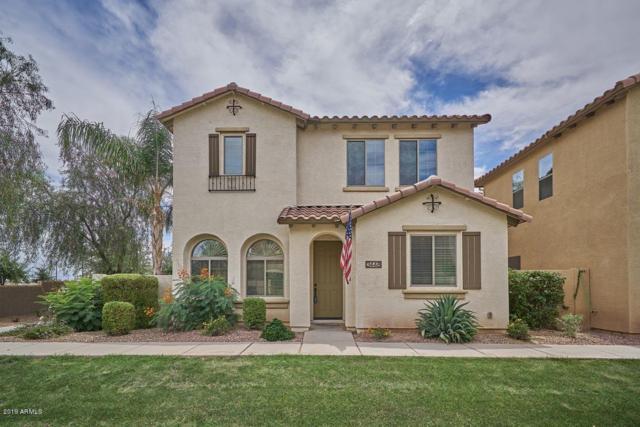 3448 S Swan Drive, Gilbert, AZ 85297 (MLS #5939948) :: Yost Realty Group at RE/MAX Casa Grande