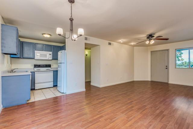 2220 W Dora Street #219, Mesa, AZ 85201 (MLS #5939949) :: Revelation Real Estate