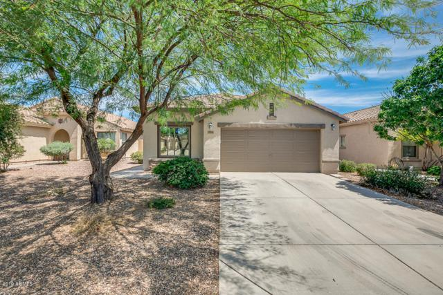 914 W Desert Seasons Drive, San Tan Valley, AZ 85143 (MLS #5939960) :: Revelation Real Estate
