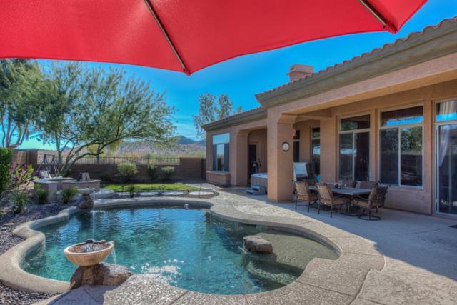 1704 W Calle Marita Drive, Phoenix, AZ 85085 (MLS #5939970) :: Occasio Realty