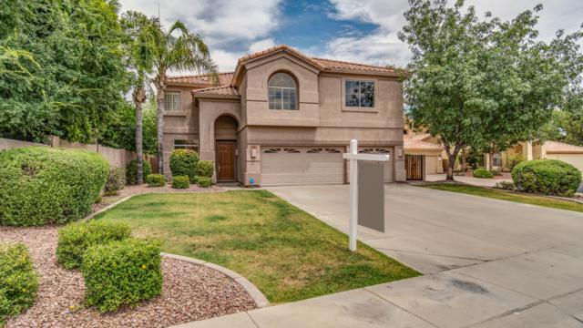 9871 S La Rosa Drive, Tempe, AZ 85284 (MLS #5939980) :: Revelation Real Estate