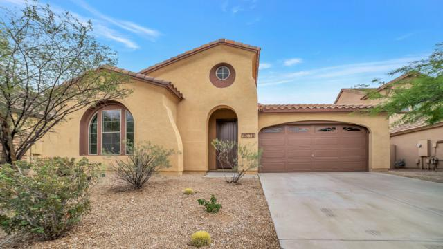18079 W Paseo Way, Goodyear, AZ 85338 (MLS #5939982) :: The Kenny Klaus Team