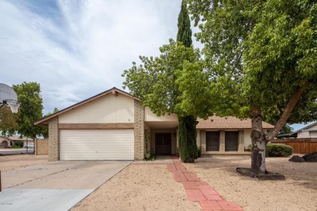 3856 W Wagoner Road, Glendale, AZ 85308 (MLS #5939993) :: Occasio Realty